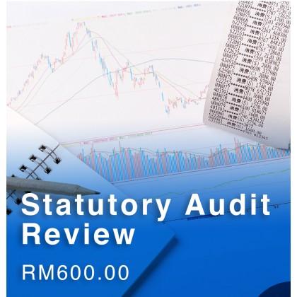 Statutory Audit Review
